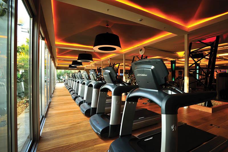 Лиственница – лучшее напольное покрытие пола фитнес-зала