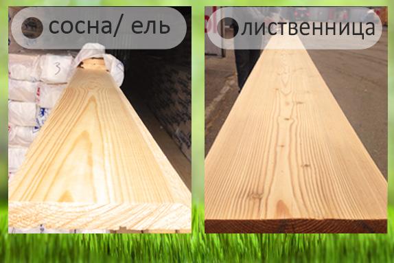 как отличить лиственницу от сосны